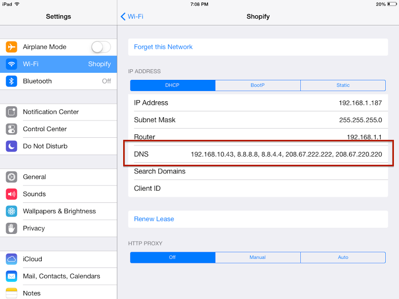 iPad DNS settings screen