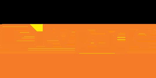 Tvpage inc